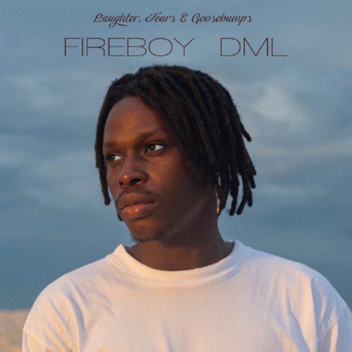 Fireboy – Like I Do (Instrumental)