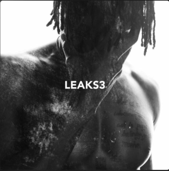 E.L. Leaks 3