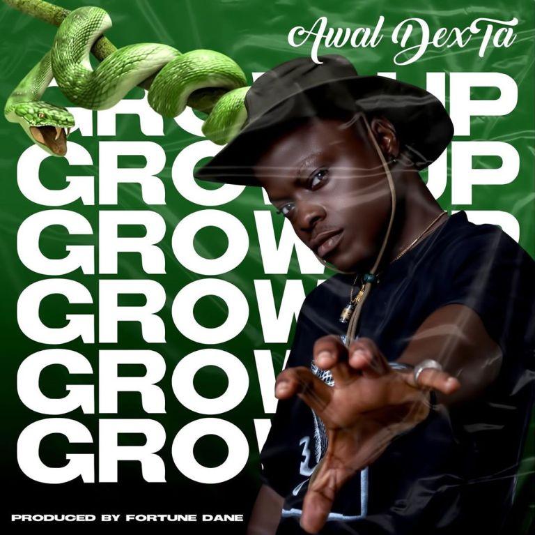 Awal – Grow Up