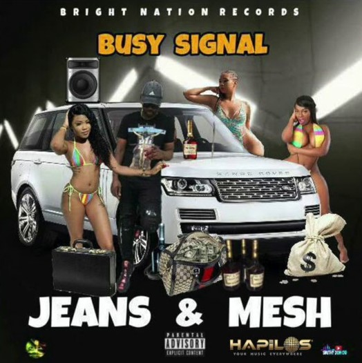 Busy Signal Jeans and Mesh