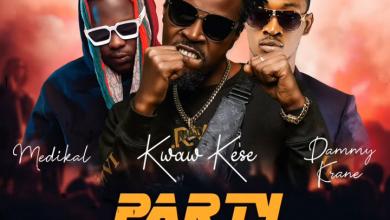 Kwaw Kese Party Rocker