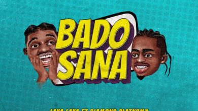 Photo of Lava Lava Ft Diamond Platnumz – Bado Sana