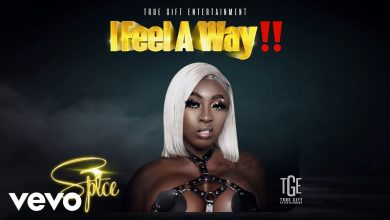 Photo of Spice – I Feel A Way (Prod by Demarco)