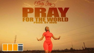 Photo of Wendy Shay – Pray For The World (Official Video)