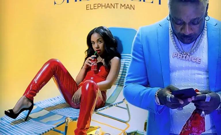 Photo of Elephant Man – She Dweet (Prod. by Animal House Production)