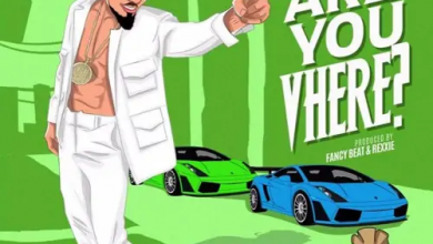 Photo of Skiibii – Are You Vhere (Prod by Rexxie)