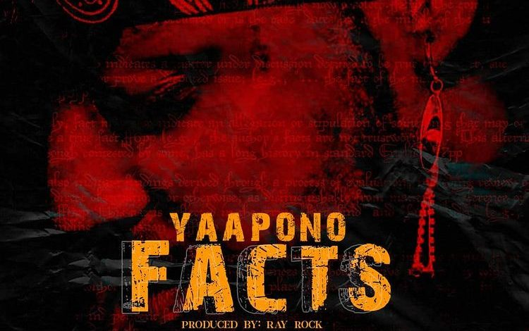 Yaa Pono Facts