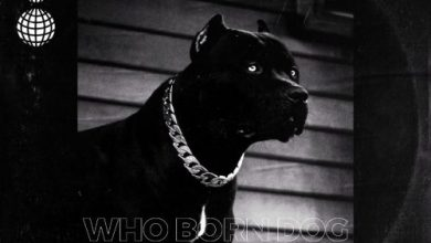 Guru Who Born Dog mp3 download