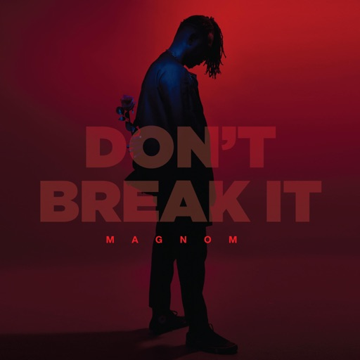 Magnom Don't Break It