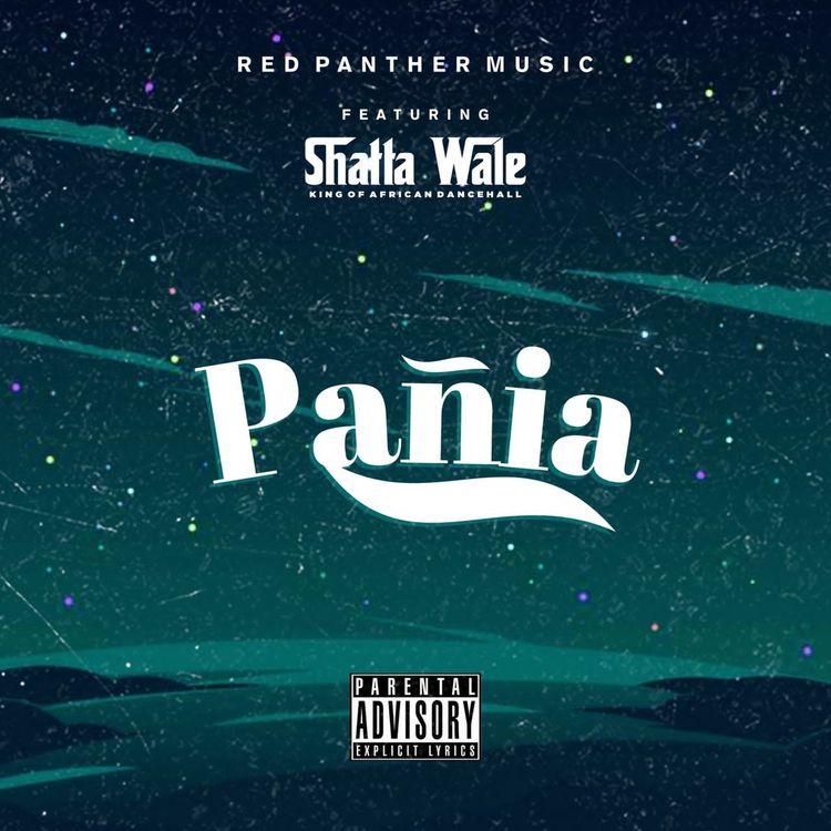 Shatta Wale Panai