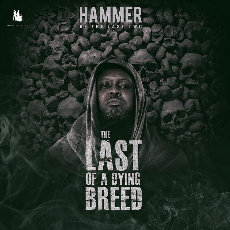 Hammer of The Last Two Ye Da Wase