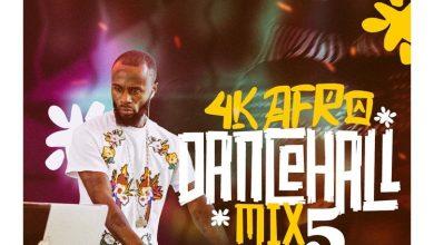 DJ Manni 4K Afro Dancehall Mix