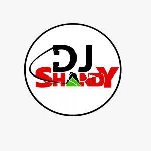 DJ Shandy – Love don't end Mixtape vol 1