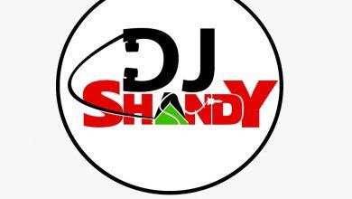 DJ Shandy – Love don't end Mixtape vol 3 mp3 download